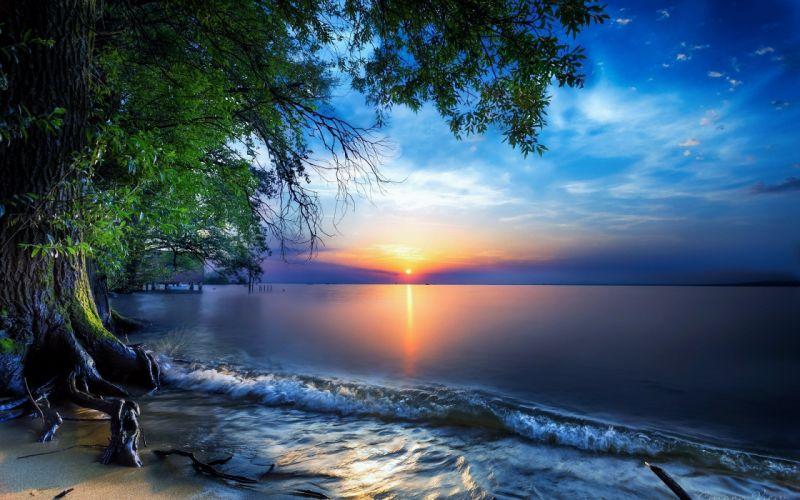 Nature Sea Sky Skyline Sun Tree wallpaper