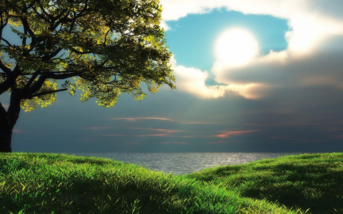 Seascape tree sun clouds sky sea wallpaper