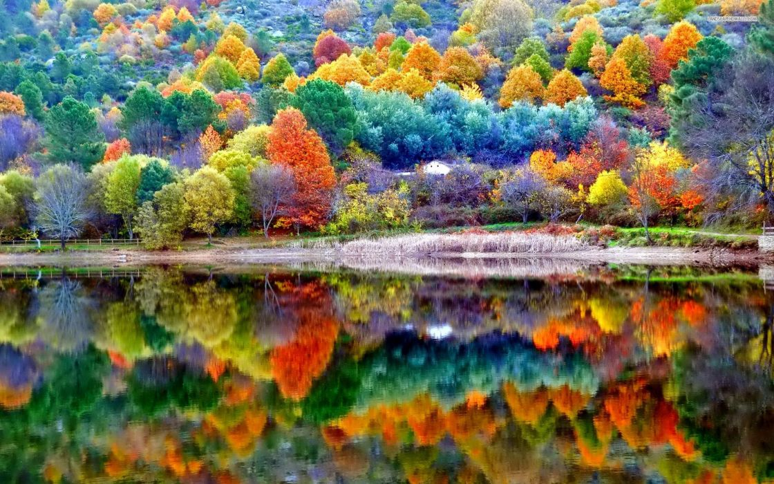 Nature Autumn Scenery wallpaper