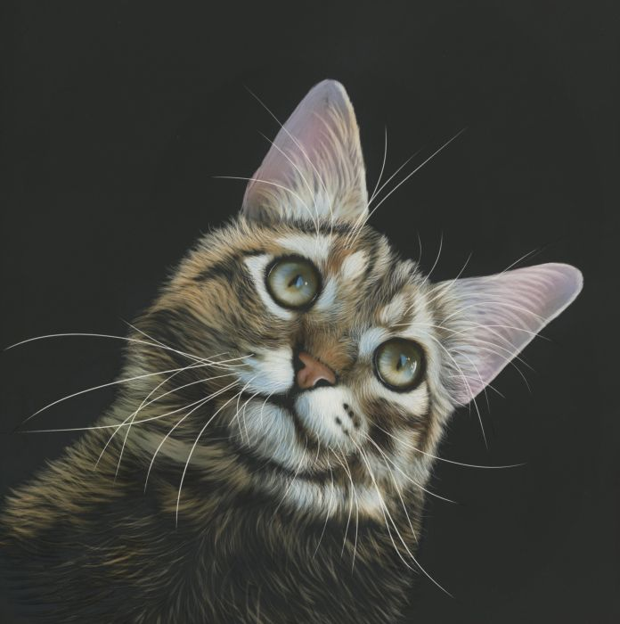 Animals Cat Painting wallpaper