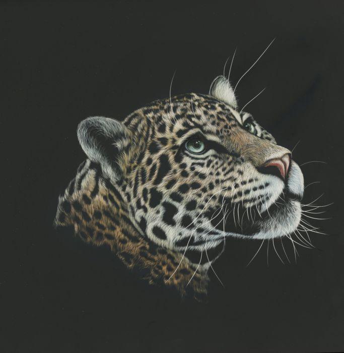 Animals Leopard Painting wallpaper