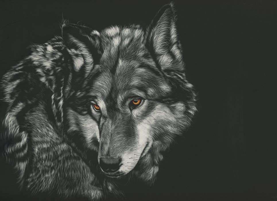 Animals Wolf Painting wallpaper