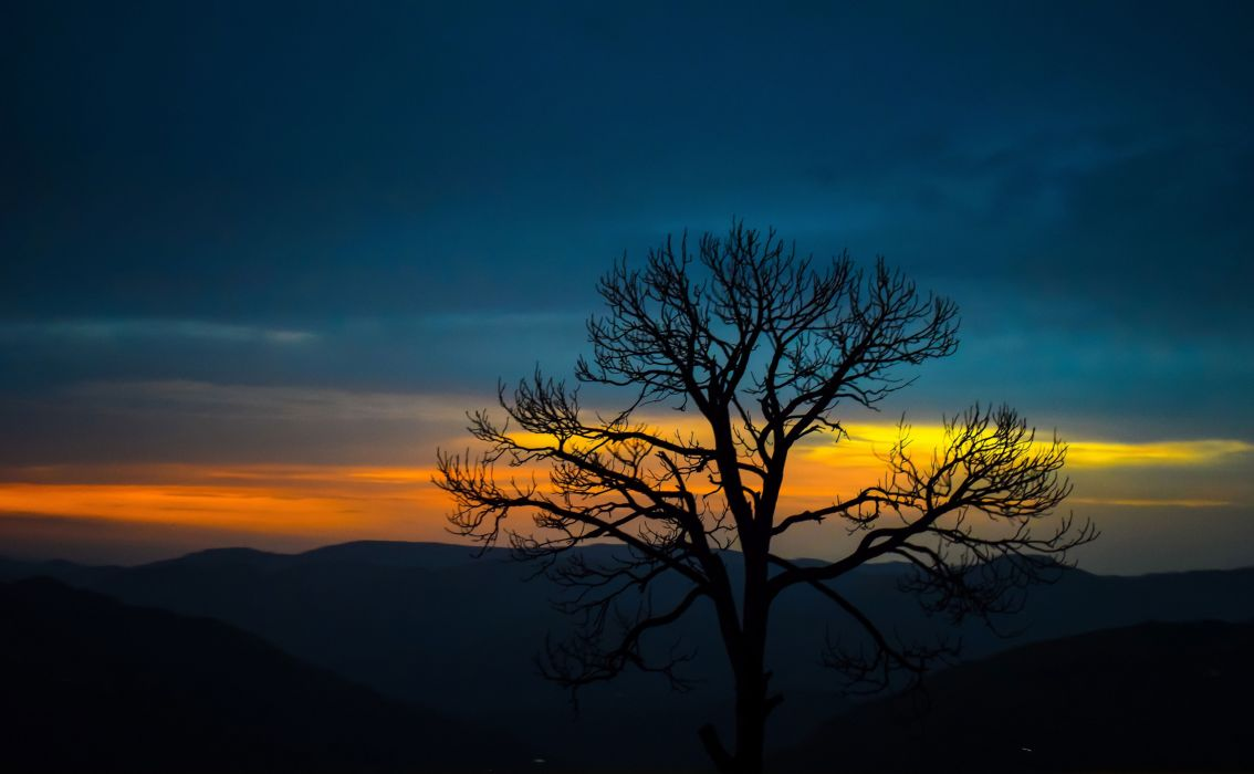 Nature Nature Trees Mountains Sunset Forest wallpaper