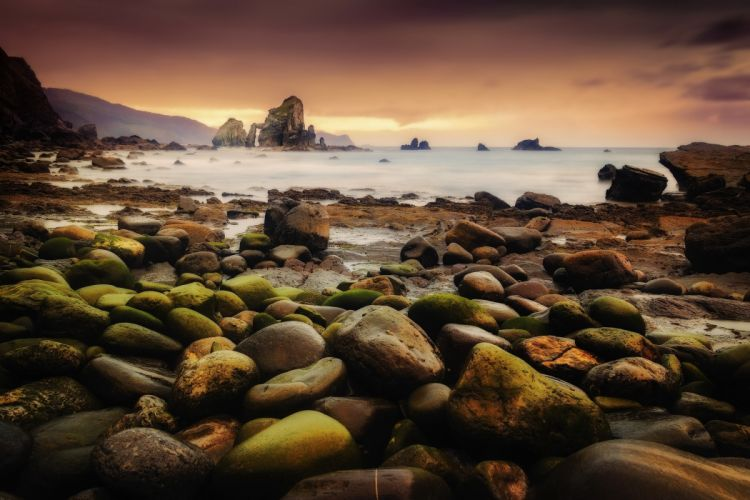 Coast Rocks Sea Nature wallpaper