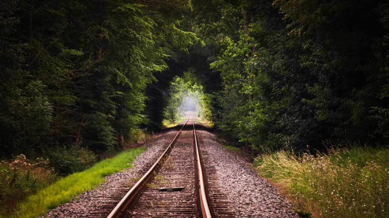 Nature Train Track wallpaper