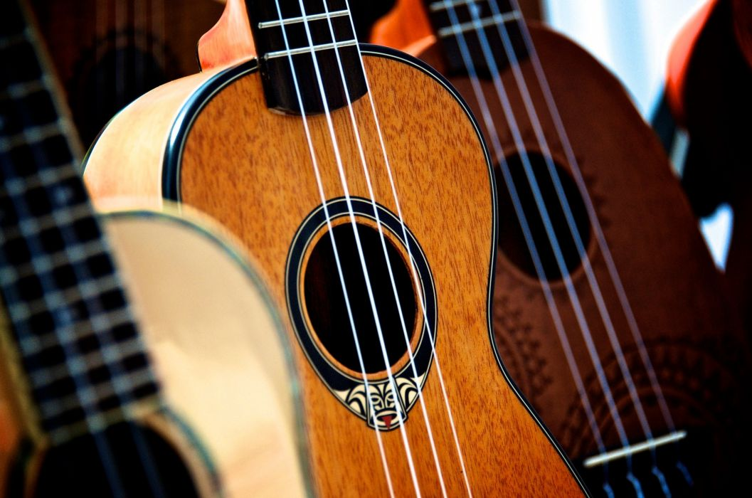 acoustic acoustic guitar bass bowed stringed instrument classic classical music fret guitar harmony instrument jazz music musical musical instrument musician nylon orchestra play sound string ukulele wood wallpaper