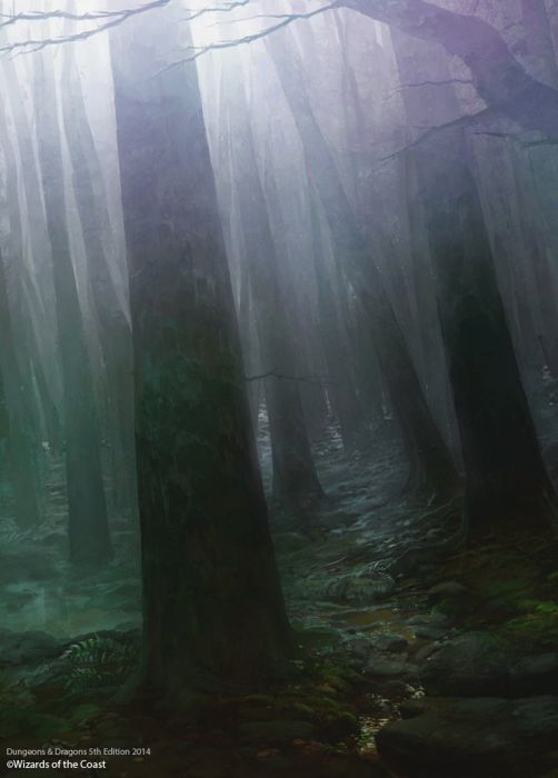 misty forest publish Raphael Ly wallpaper