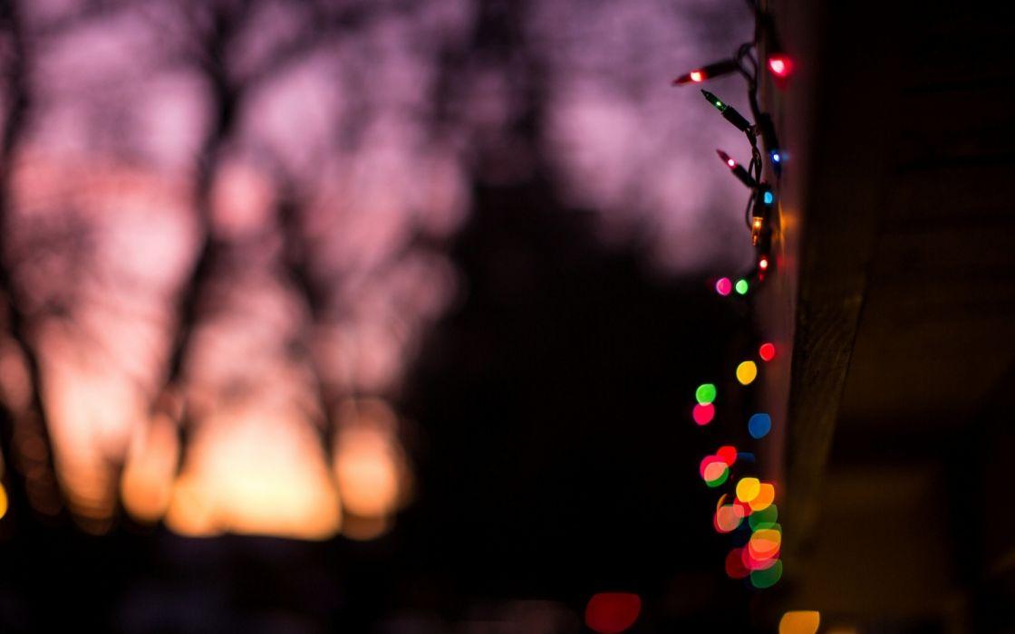 trees macro sky holidays objects wallpaper