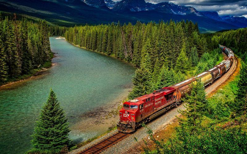 tren naturaleza lago bosque wallpaper