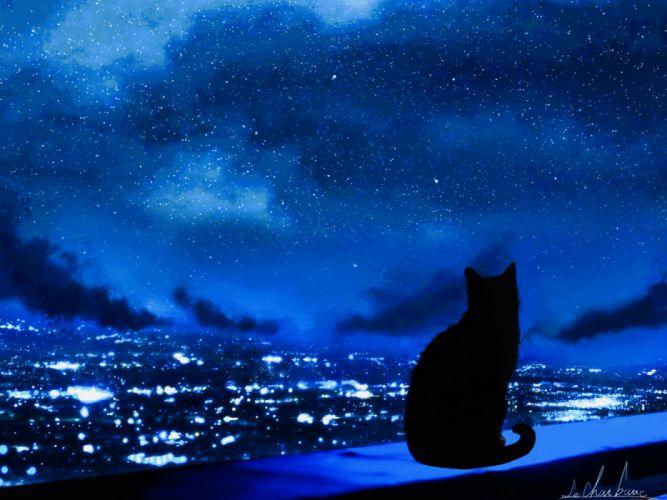 city animals cats sky night figures wallpaper