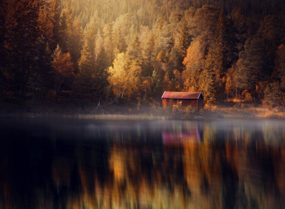 water houses forest autumn nature wallpaper