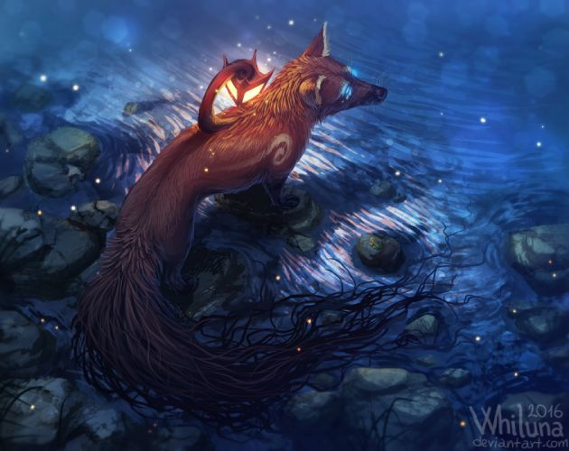 water animals foxes nature drawings fantasy wallpaper