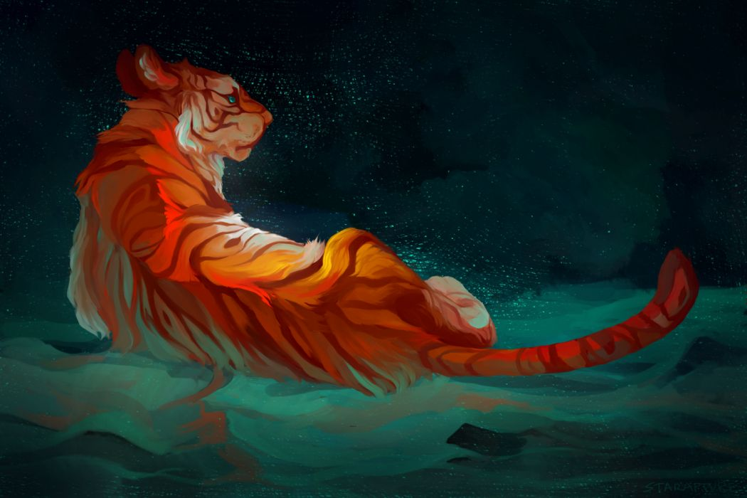water animals sky night drawings tigers wallpaper