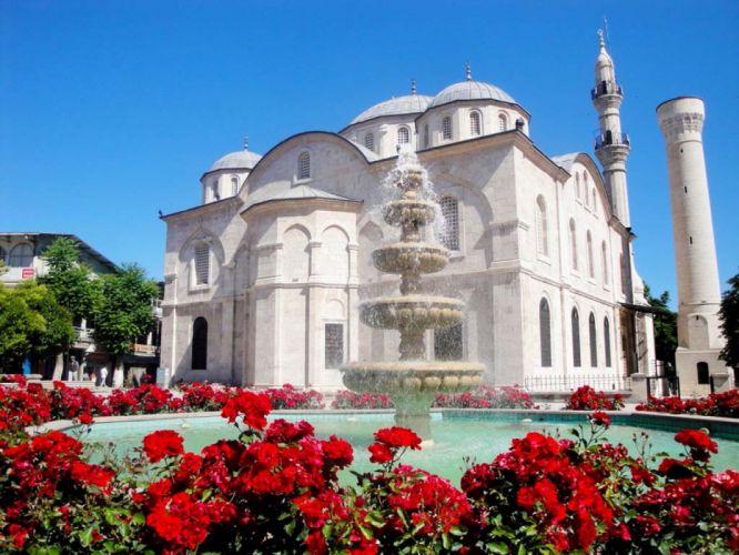 city scenery landscape turkey natural beauty tree malatya turkiye flower mosque white wallpaper