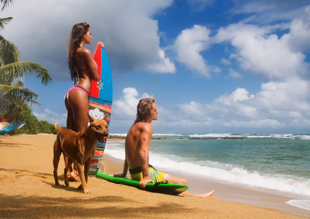 Photography sensuality sensual-sexy girl woman model legs knees bikini dog surfboard beach sea sky Viki-Odintcova wallpaper