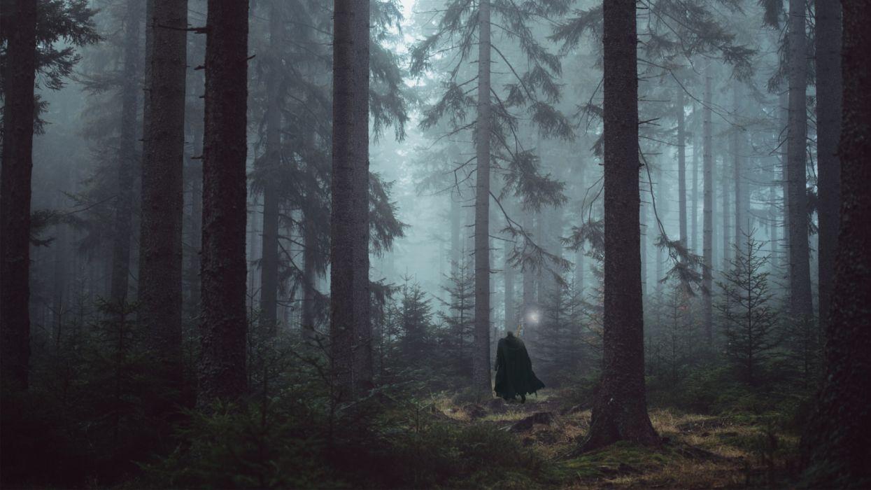 berserk anime forest men objects nature fantasy wallpaper