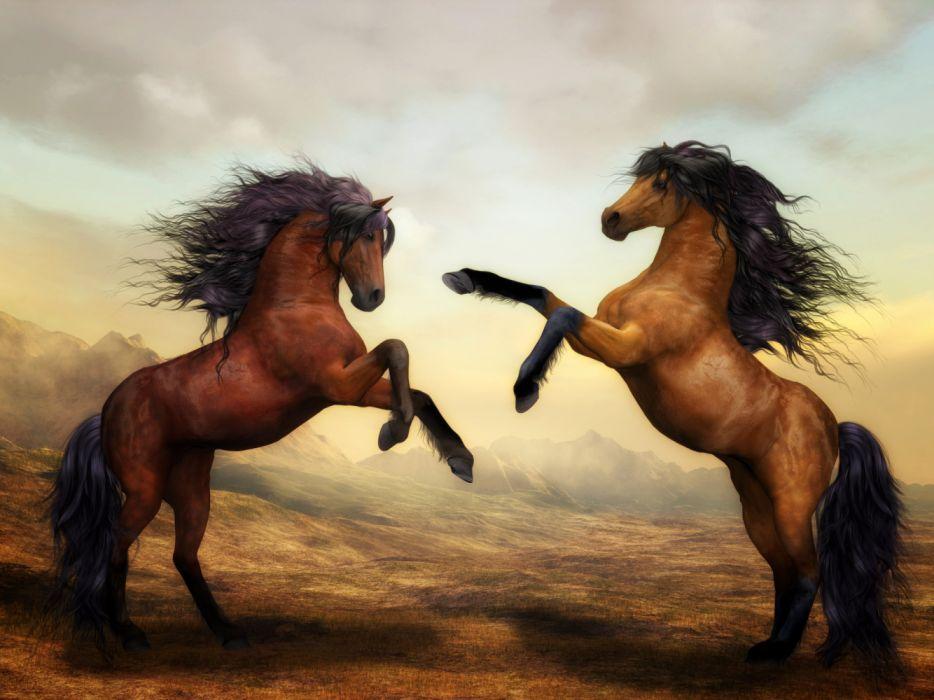 Artist Two Horses Dance 4k beauty wallpaper