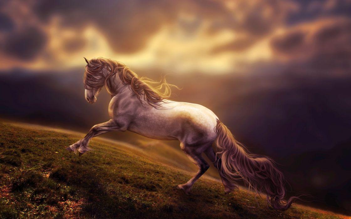 Artist Amazing Horse Art wallpaper