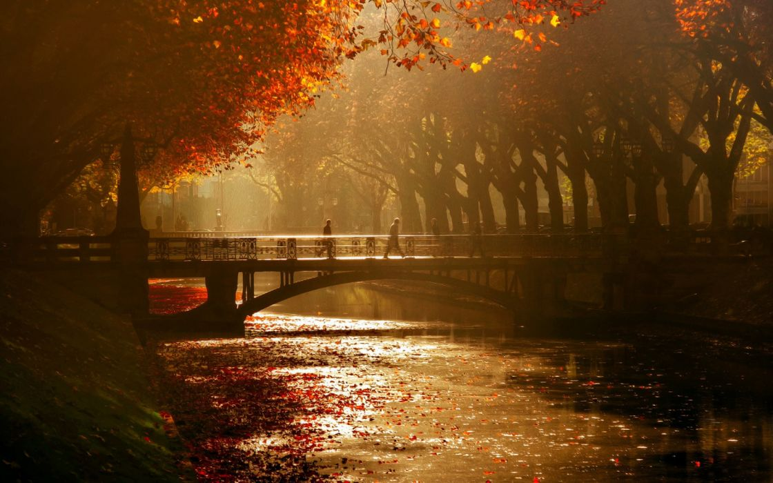water trees people bridges autumn nature wallpaper
