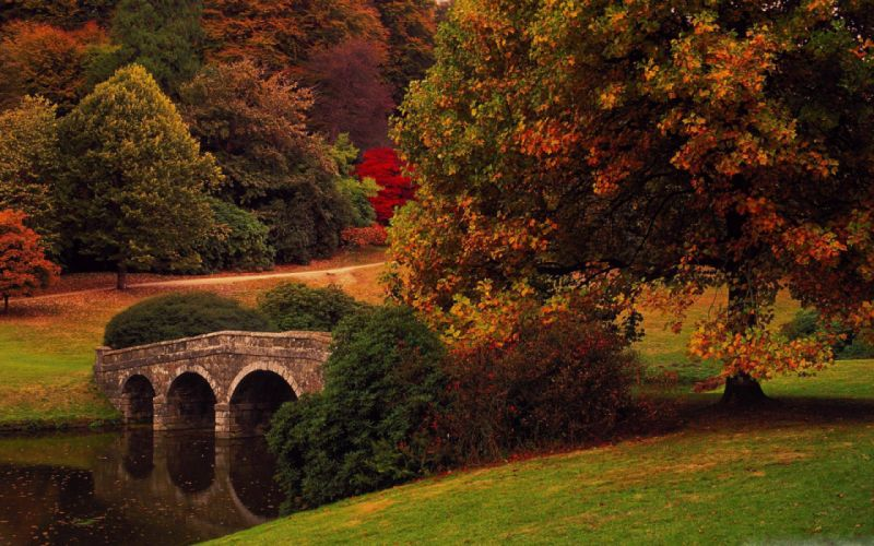 water trees bridges autumn nature wallpaper