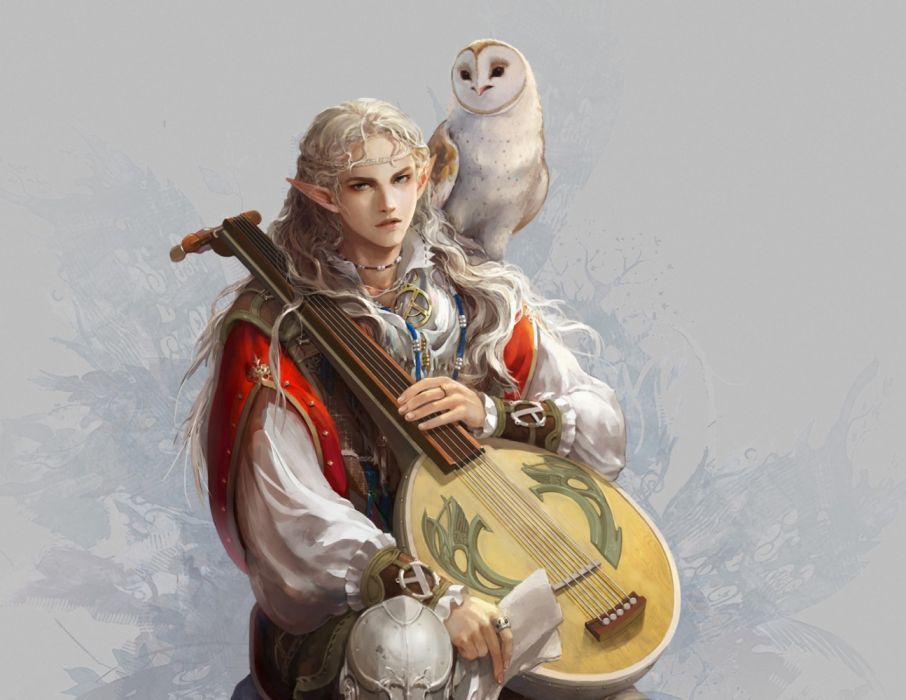 fantasy male music animal owl wallpaper