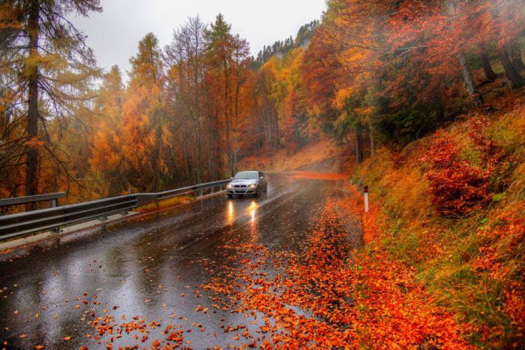 autumn car tree road rain nature beauty wallpaper