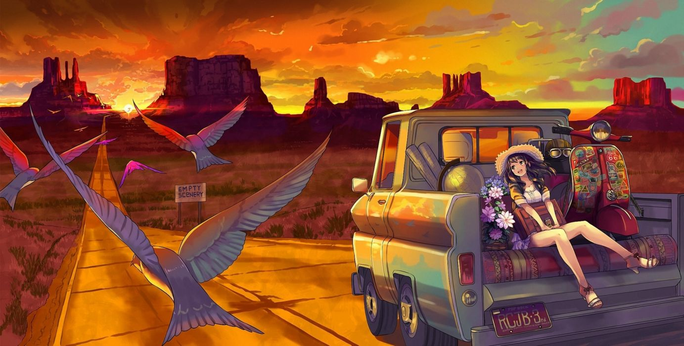 anime giel smile birds landscape car wallpaper