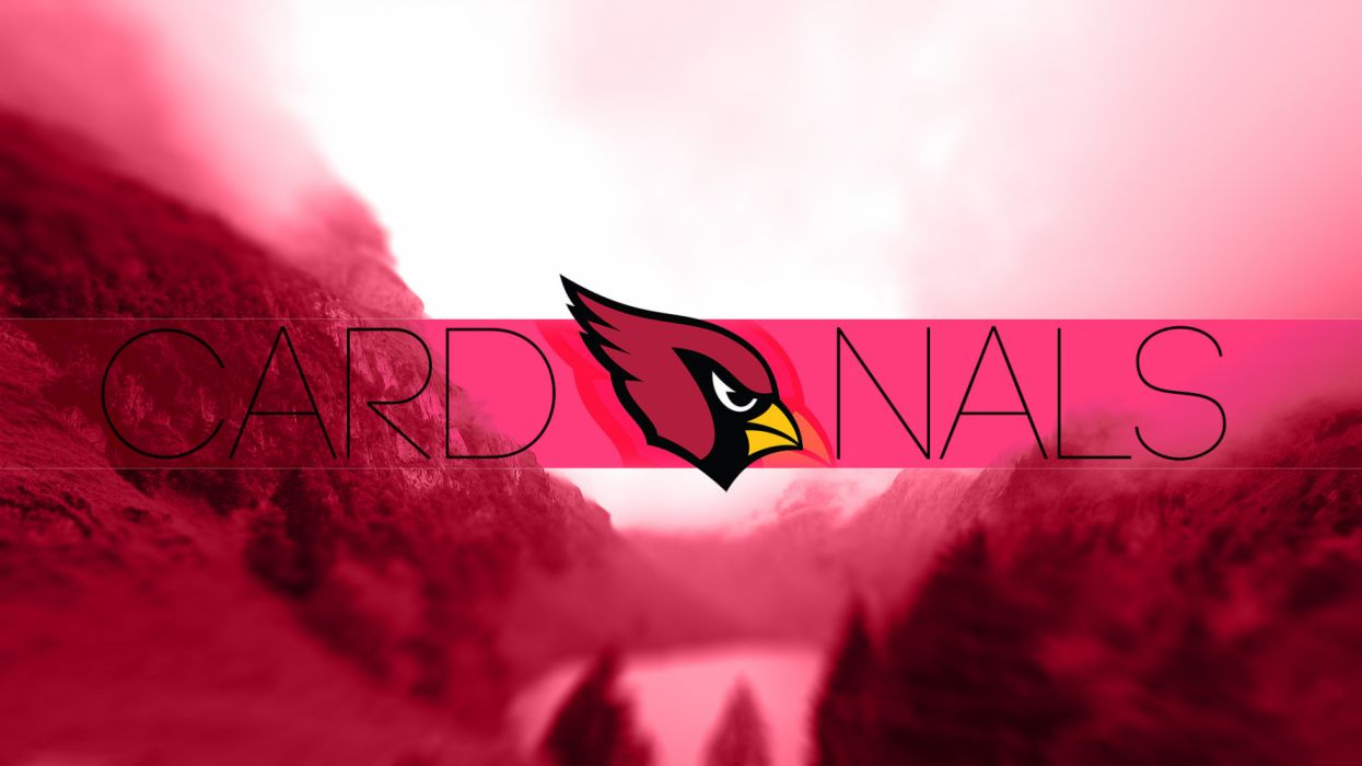 Arizona Cardinals nfl football sports wallpaper