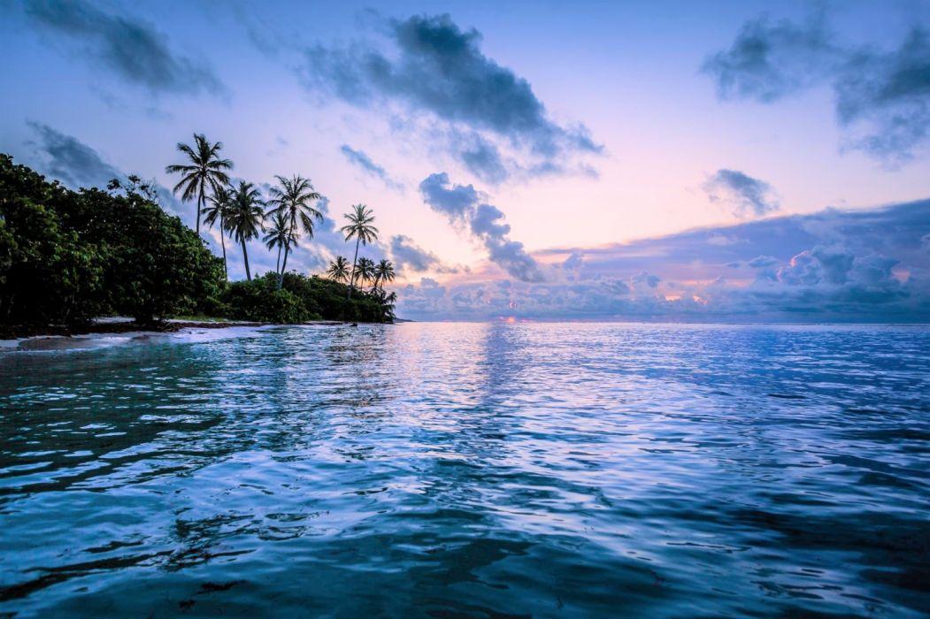 Beach Earth Horizon Ocean Palm Tree Sea Sunset Tropical wallpaper