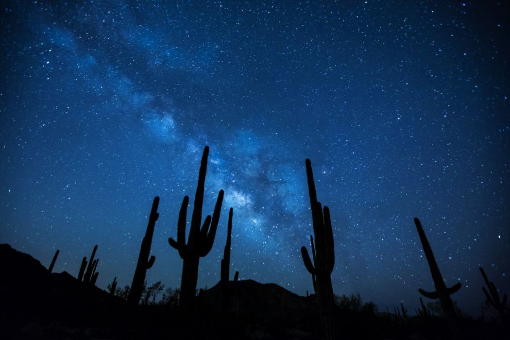Cactus Desert Earth Galaxy Milky Way Night Silhouette Sky Starry Sky Stars wallpaper