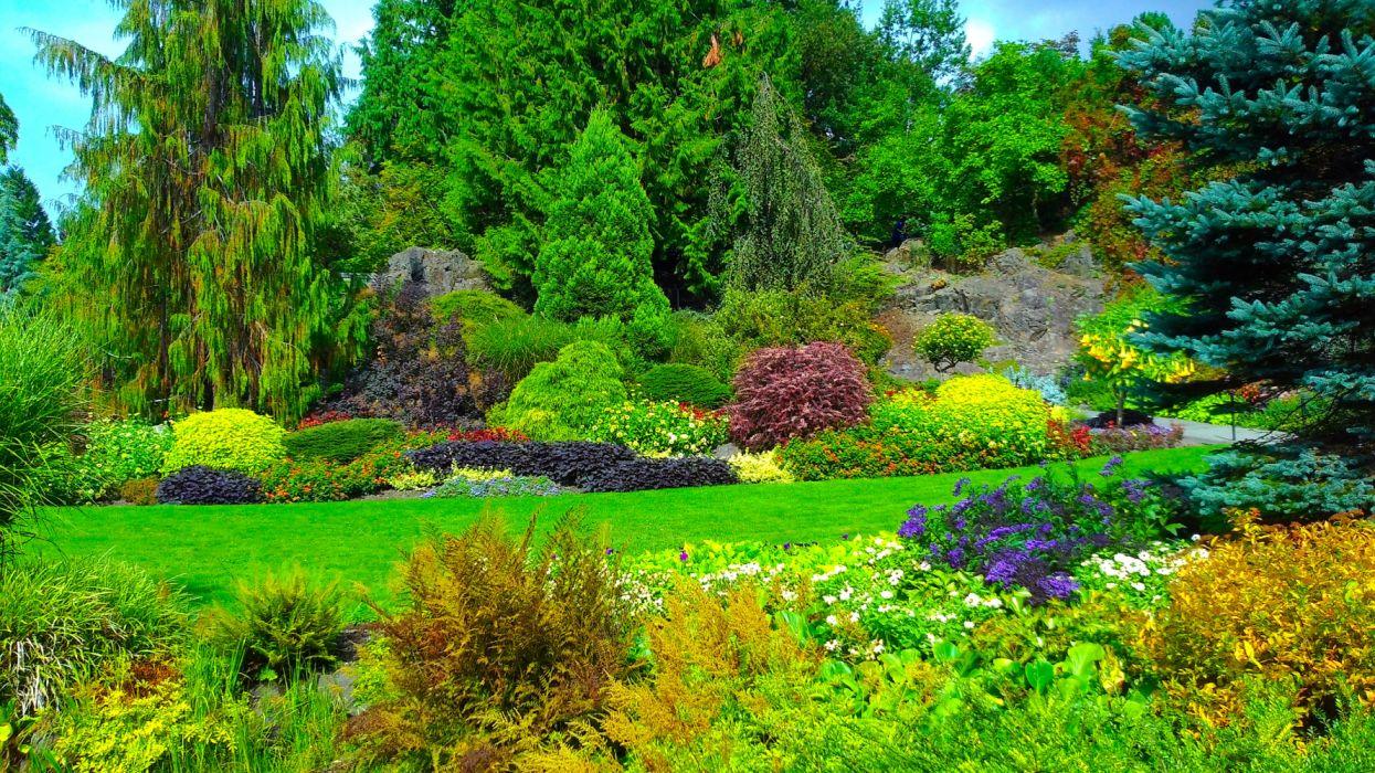 Bush Canada Garden Green Man Made Plant Queen Elizabeth Garden Shrub Tree wallpaper