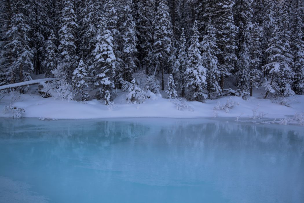Canada Parks Winter Forests Coast Banff Snow 539537 5000x3334 wallpaper