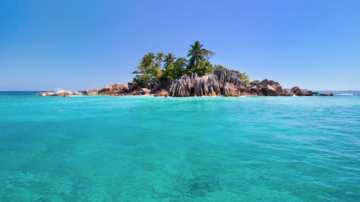 Earth Island Ocean Palm Tree Rock Sea Seychelles Tropical Turquoise wallpaper