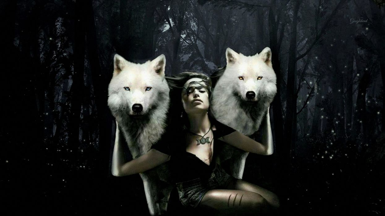Artistic Forest Girl Manipulation White Wolf Wolf Woman wallpaper