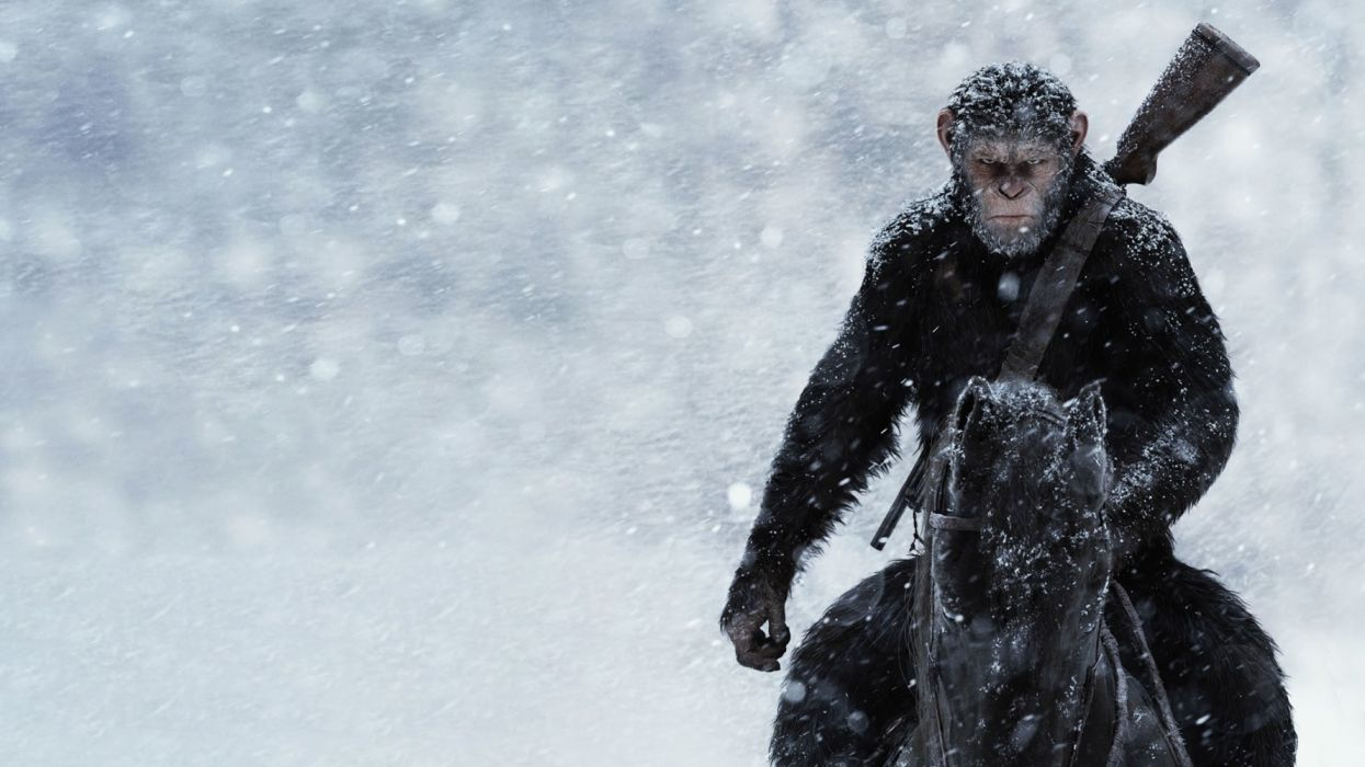Andy Serkis Caesar (Planet of the Apes) Planet of the Apes wallpaper