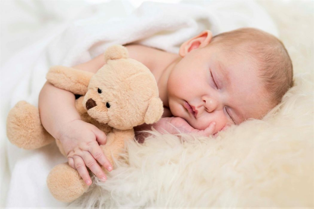 Adorable Baby Cute Sleeping Teddy Bear Wallpaper 2560x1707 1230842 Wallpaperup