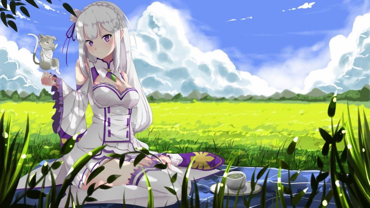 Rezero Kara Hajimeru Isekai Seikatsu Emilia Wallpaper 1920x1080