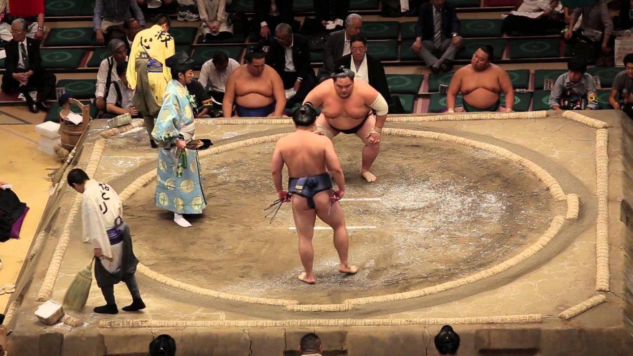 sumo lucha deporte japones wallpaper