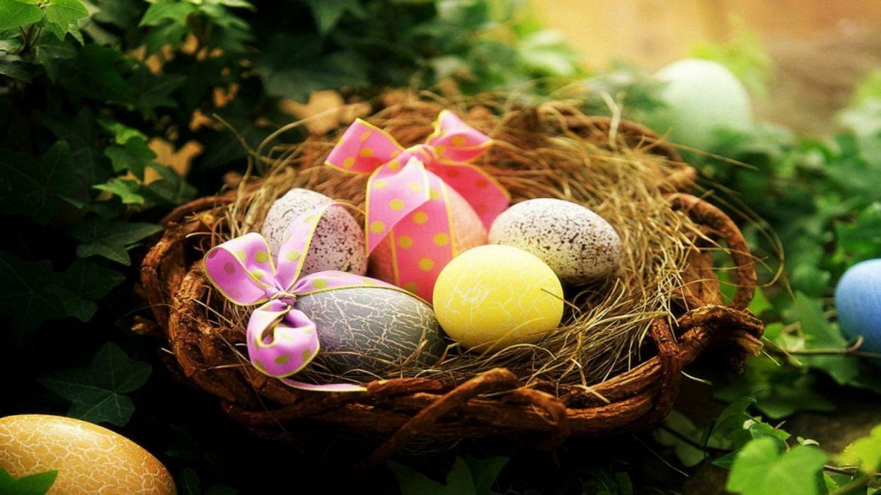 huevos pascua cesta colores holiday wallpaper