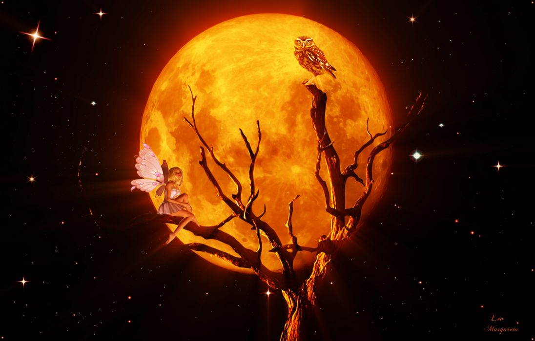 Orange Moon Glow On Little Fairy And Owl Fantasy Fairy wallpaper
