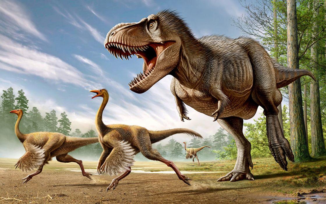 Ancient animals Dinosaur Tyrannosaurus rex wallpaper