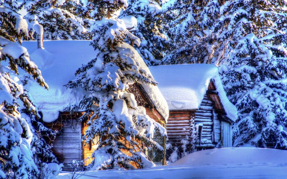 Alaska winter landscape snow forest spruce huts wallpaper