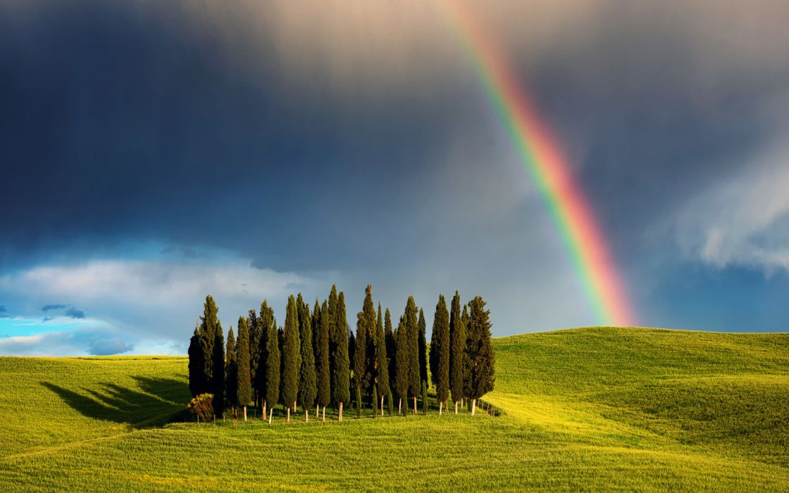 arco iris arboles prado naturaleza wallpaper