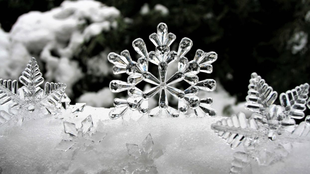 ice stars winter snow the reflection of light biel bokeh white frost snow forest desktop frozen snow caps cold wallpaper