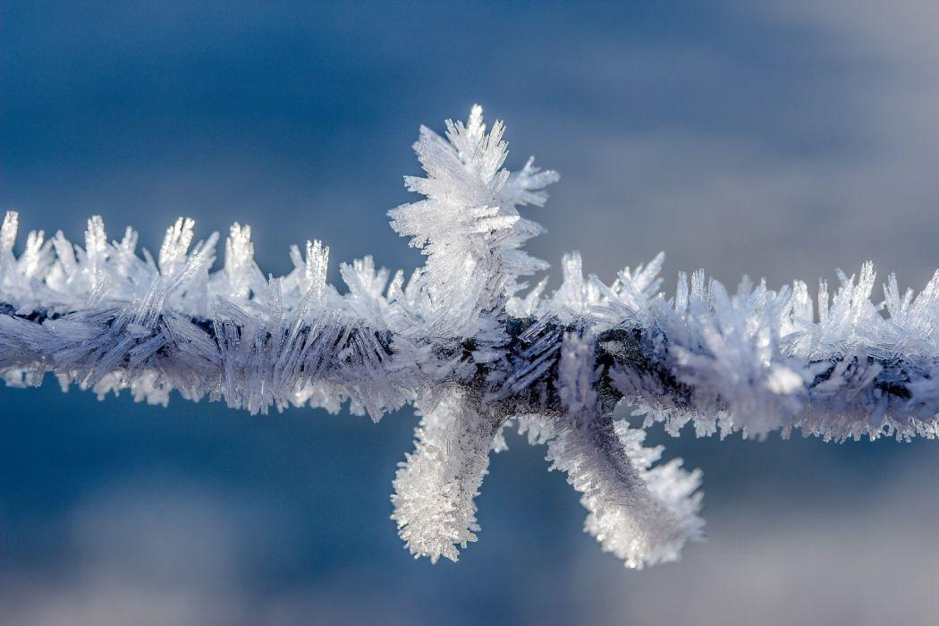 eiskristalle snow nature beauty wallpaper