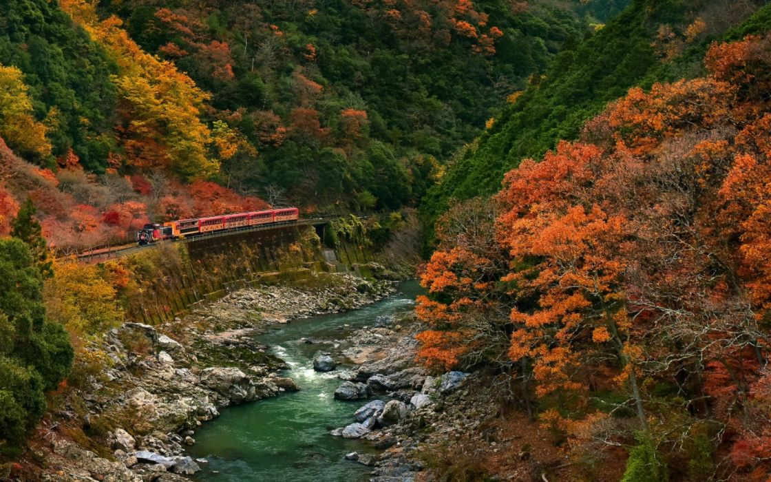 red train river surrounded by trees at daytime nature landscape wallpaper