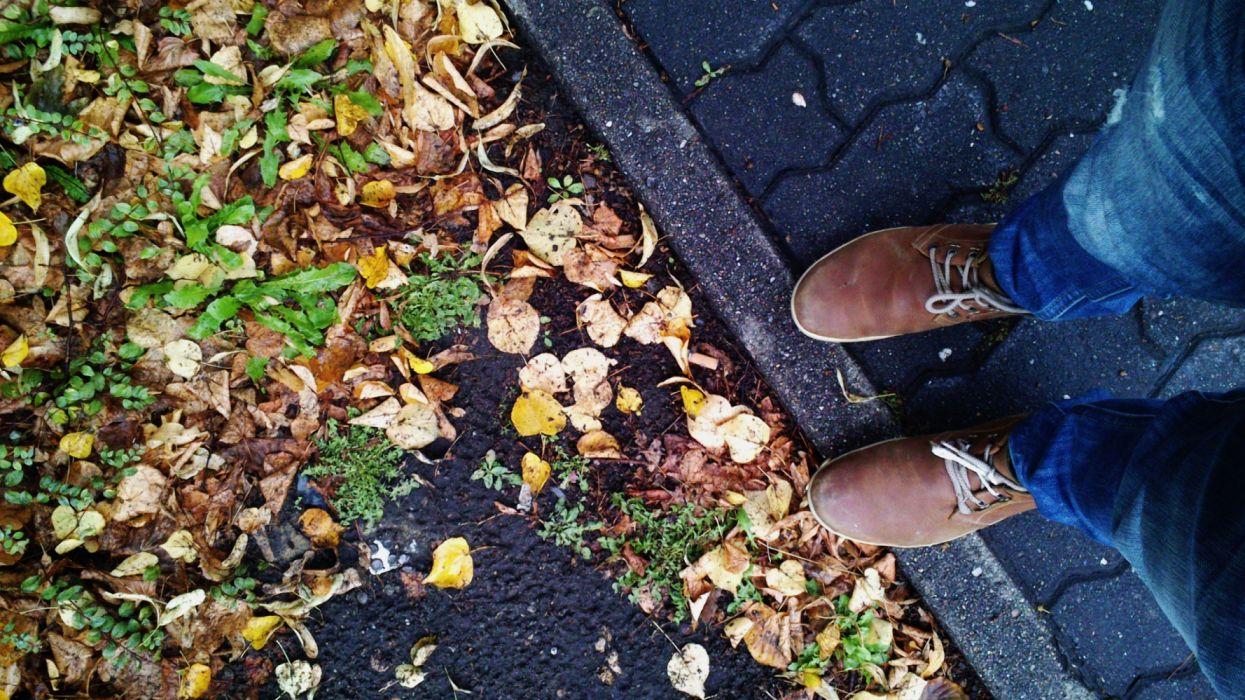 hojas suelo pies carretera wallpaper