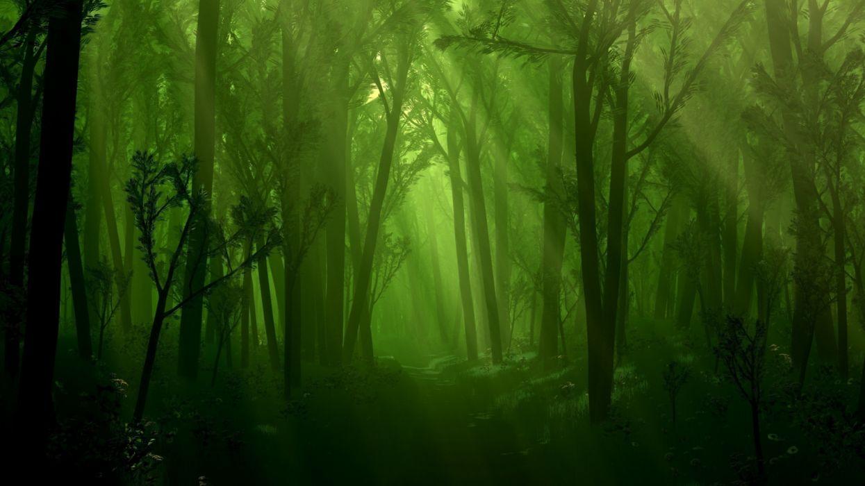 3d graphics road forest nature widescreen wallpaper