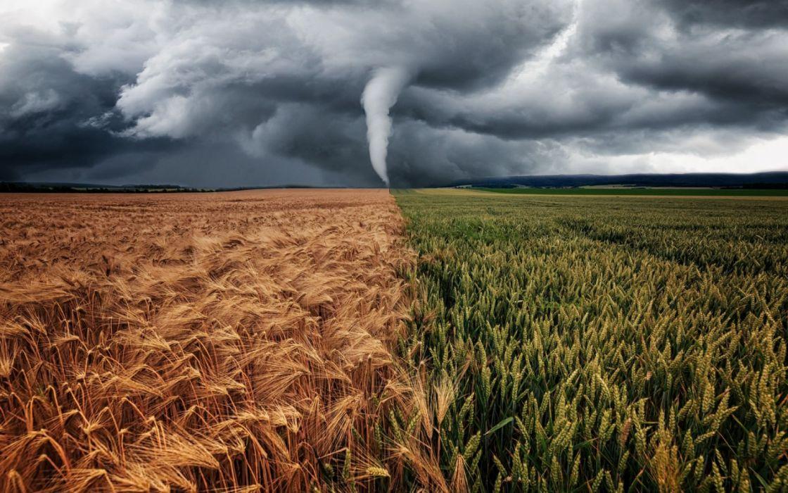 tornado trigo verde seco naturaleza tormenta wallpaper