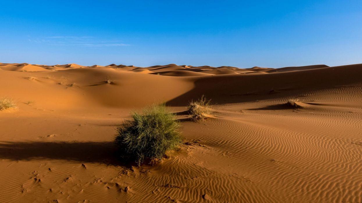 sahara desert sand sky nature wallpaper